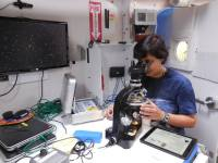 Studying asteroid samples using a special microscope